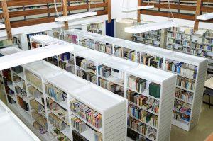 Biblioteca - Piso inferior